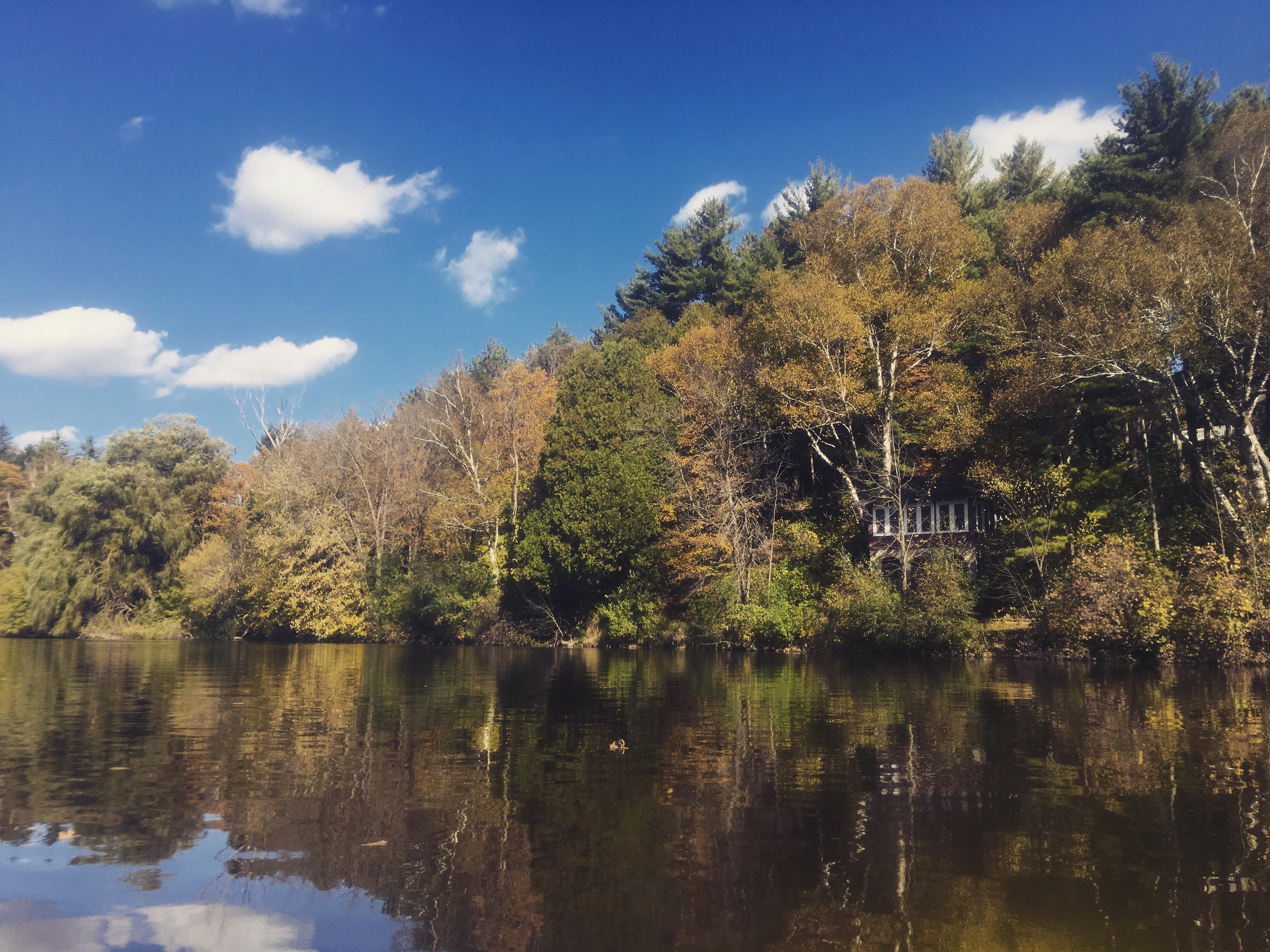 River Island Park